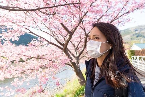 マスクでもPM2.5対応の製品が出てきたが、クルマ用のエアコンフィルターにもより清浄効果の高いものをつけたい
