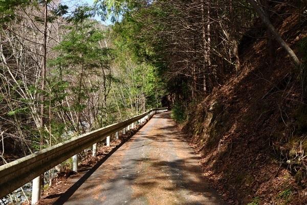 木の枝が無造作に転がり、通行車がいないことを示すかのような道。当然、すれ違いは出来ない