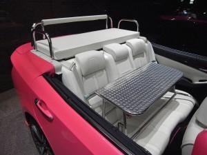 通常のトランク部分に座るクッションとバー、後席には足を置く荷台が装着されている。耐荷重は約330kgなので、力士2人でも余裕だ。